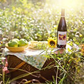 庭とワイン