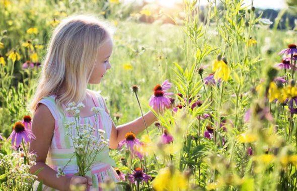 小さな女の子とお花畑